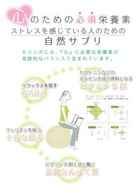 モリンガパウダー,モリンガサプリメントセット価格